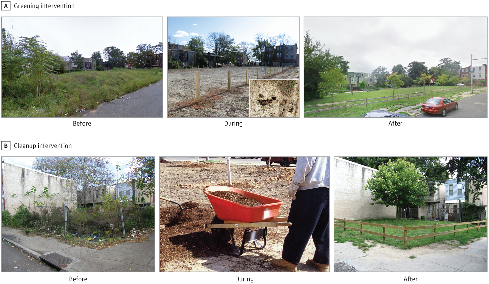 Greening vacant lots reduces depression in city dwellers | Penn Today