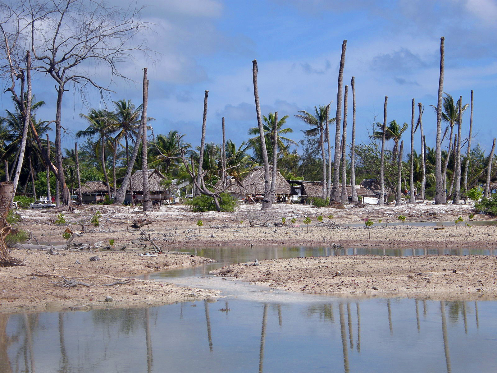 Seeking refuge in the climate emergency | Penn Today