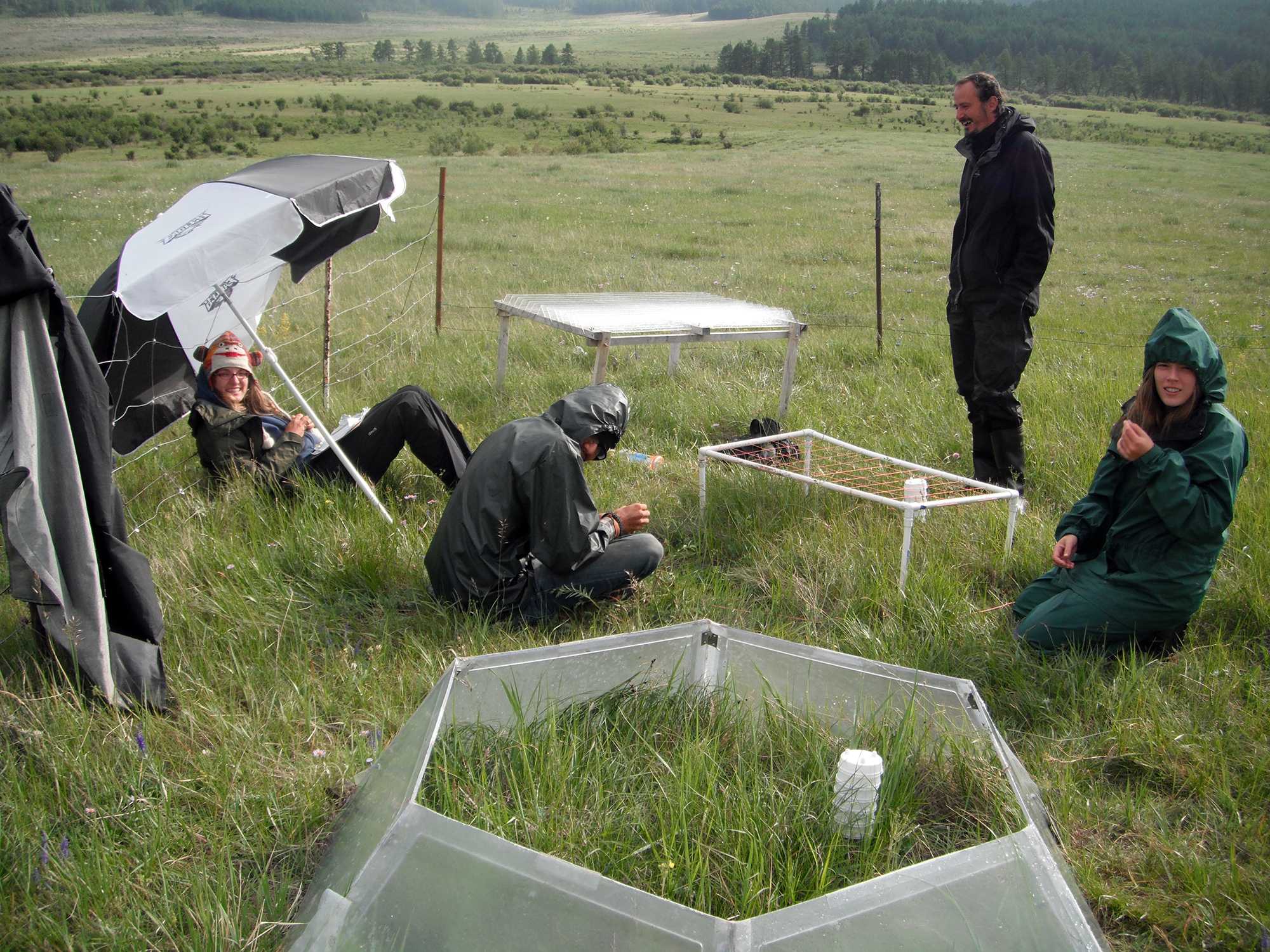 research in mongolia