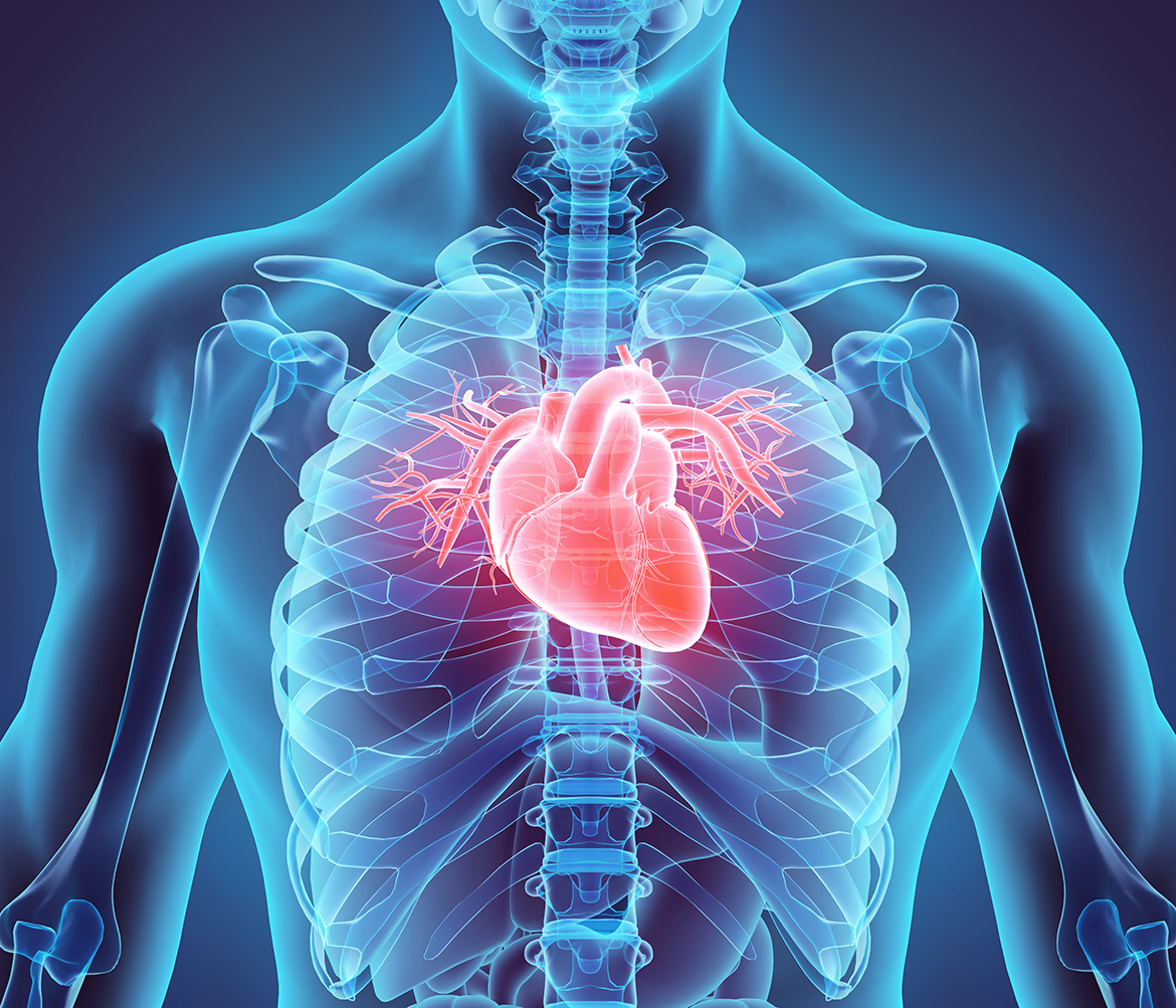 Communication on this topic: How to Lower Resting Heart Rate, how-to-lower-resting-heart-rate/