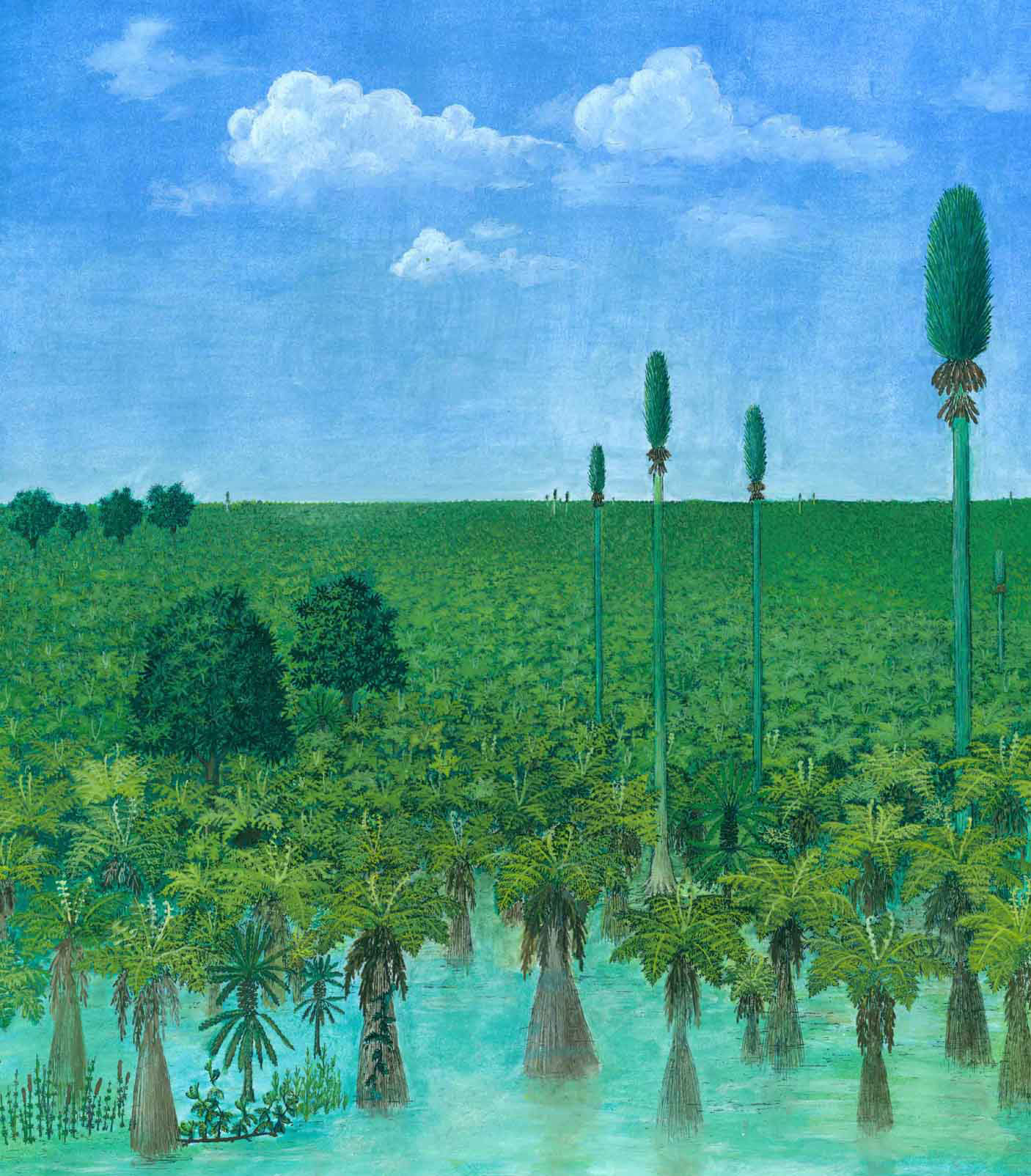 A reconstruction of the 300-million-year-old peat-forming forest at a site near Wuda, China