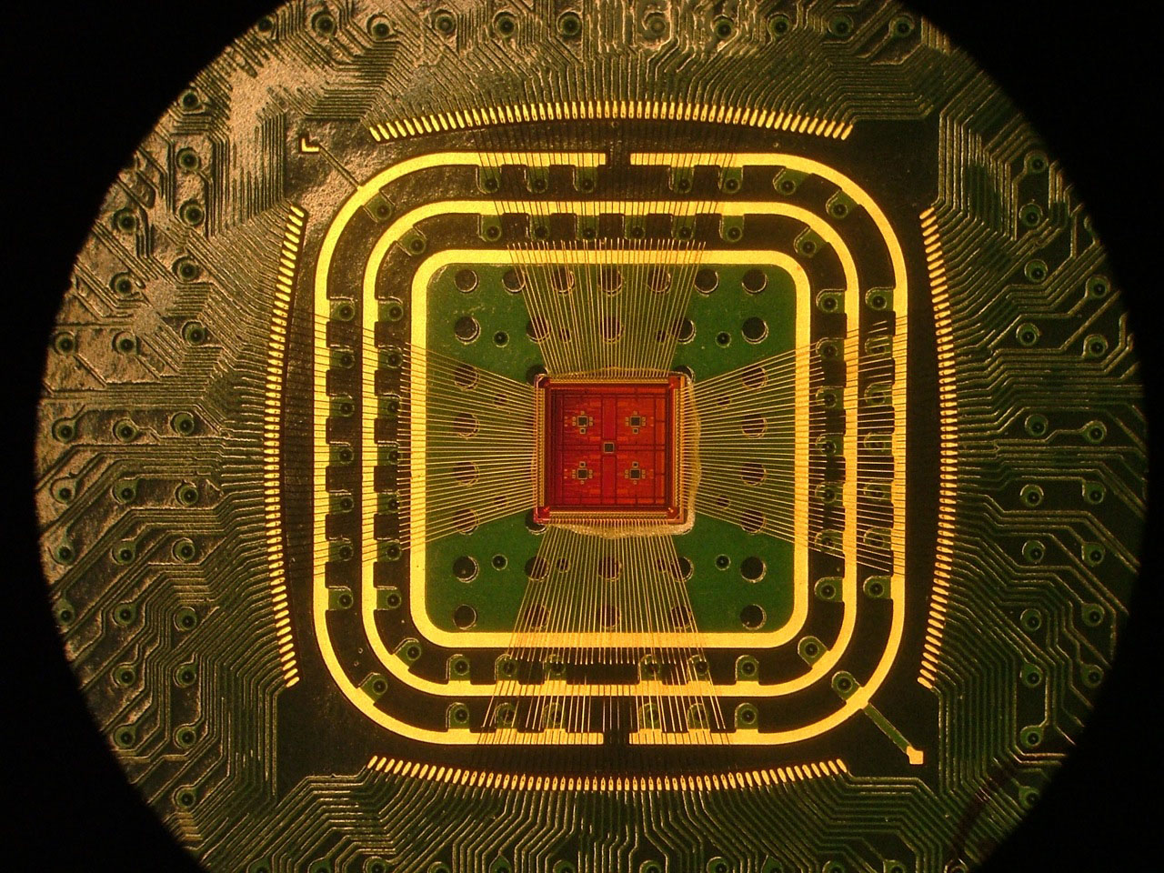 Photograph of the amplifier chip, attached to a circuit board with thin gold wirebonds. (Credit: Columbia Engineering)