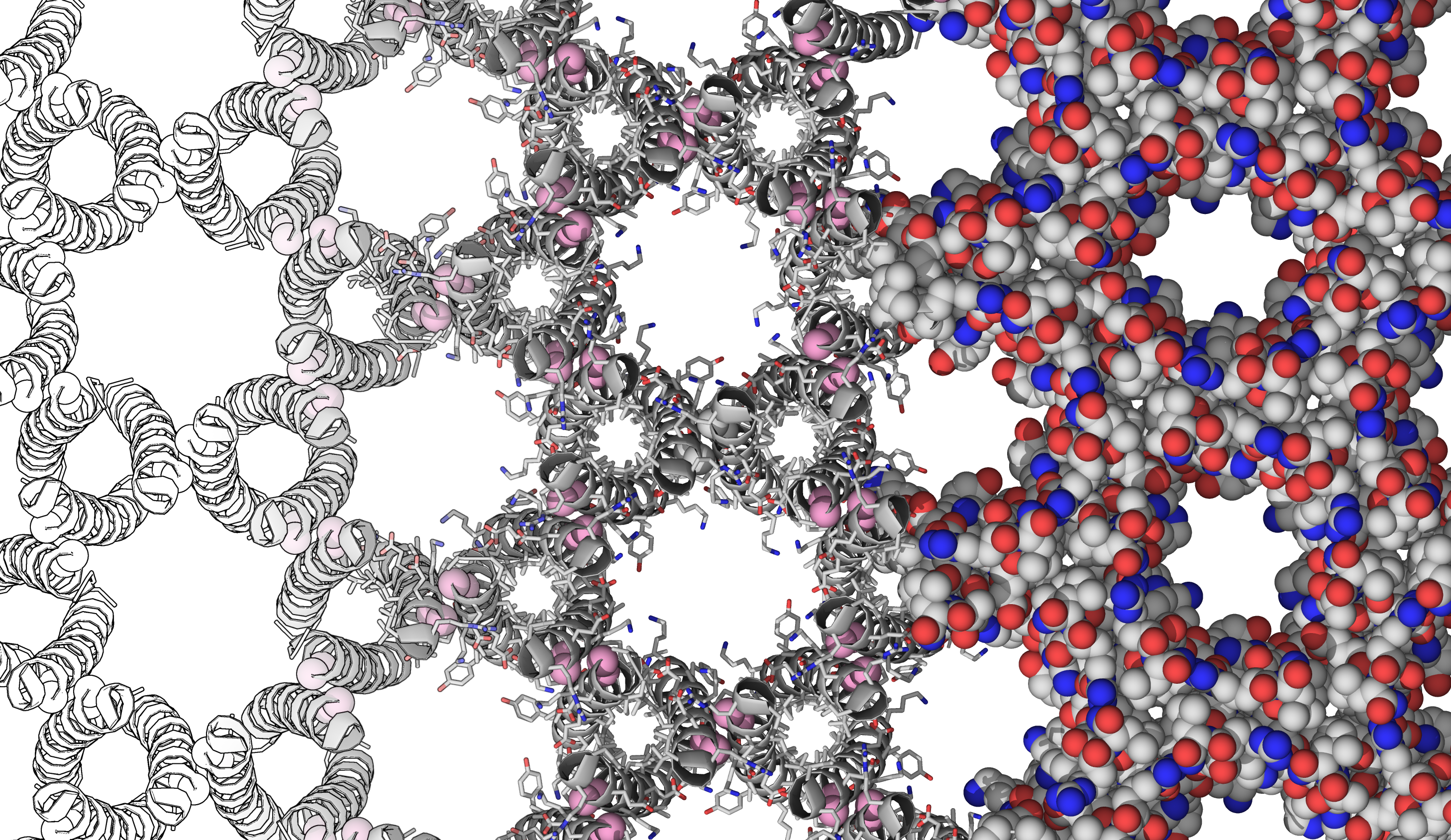 An illustration of the researchers' target protein crystal. (ART: Christopher MacDermaid)