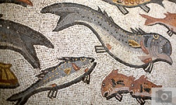 Mosaic Tells Nearly 2,000-Year-Old Story