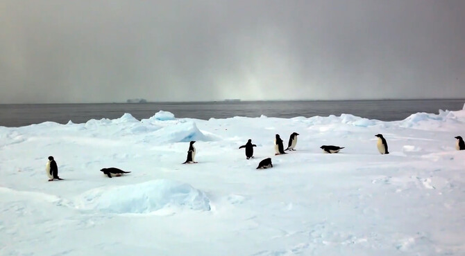 The link between the Southern Ocean and climate change