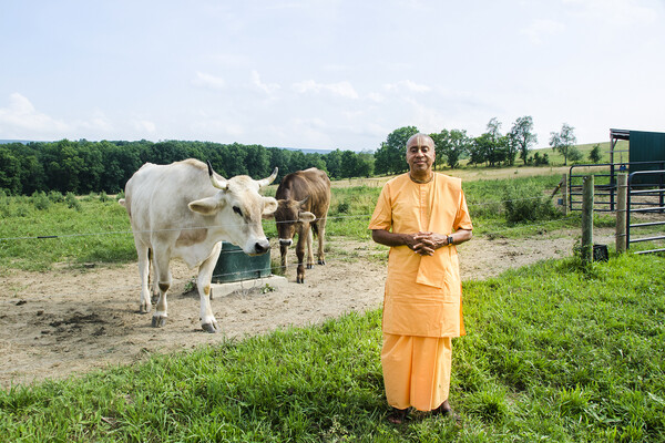 Devamrita Swami on Eco Farm