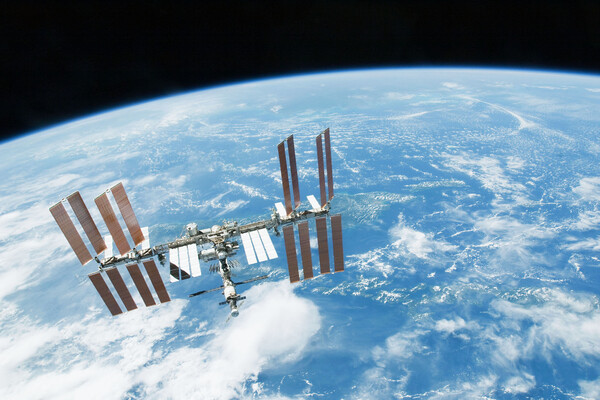 Immune system microgravity space
