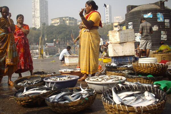 Women-chat-selling-at-Fish-Auction-dockside-in-Mumbai-India-photo-by-Photo by Rudolph A. Furtado, from Wikimedia Commons.