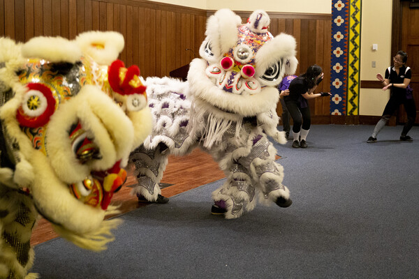 Two lion costumes that each have two students inside during performance.