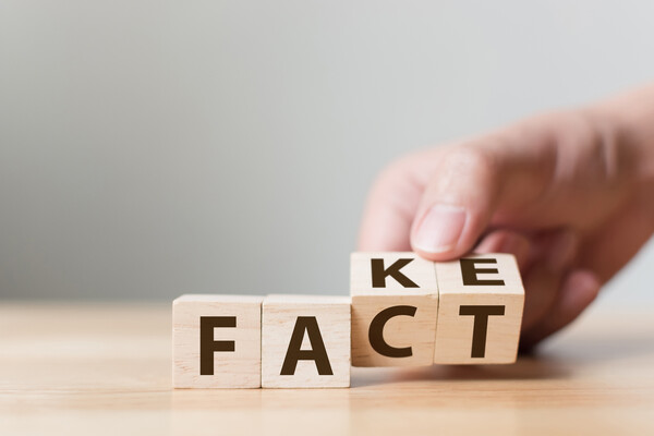 "Wooden blocks spelling out ""fact"" and ""fake"""