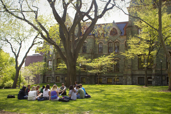 Students sit in circle under a tree