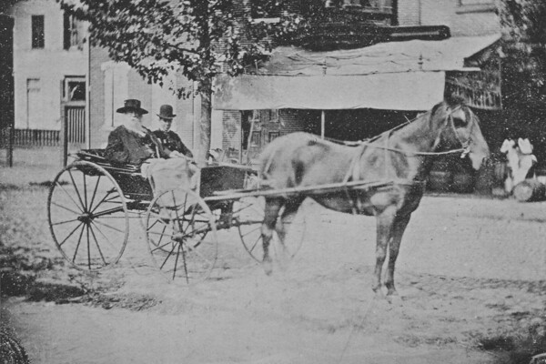 walt whitman on a horse and buggy