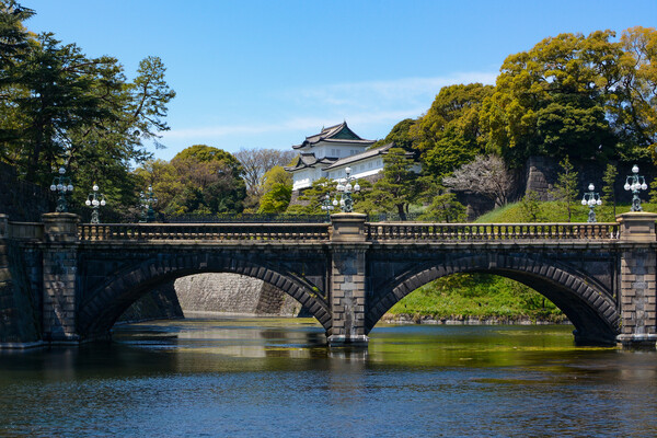 Bridge hangs over water with palace in background