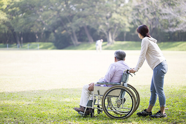 person pushing another person in a wheelchair on a grassy area in a park during the daytime