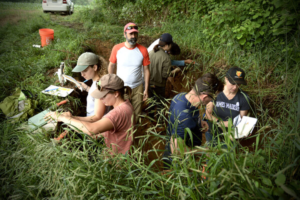 Group of students with professor standing in a soil pit, five feet deep, with vegetation surrounding