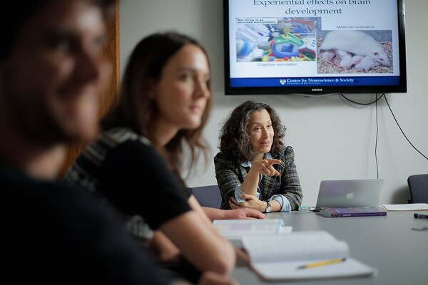 "Person sitting at a table with blurry people in front and a screen hanging on the wall behind, which reads, ""Experiential effects on brain development."""