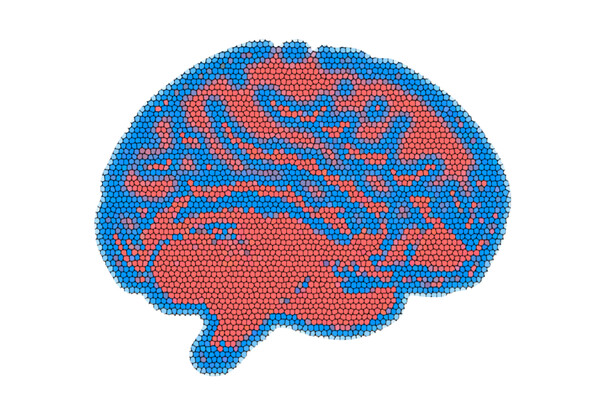 Pixelated image of a brain with red, blue, and purple regions
