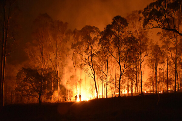A bushfire burning in Queensland Australia