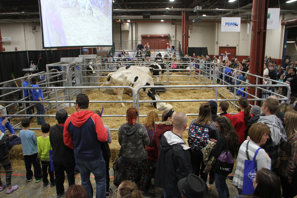 farm show calving center