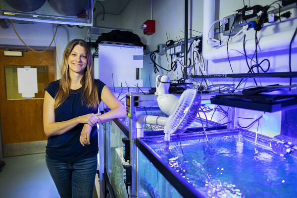 Marine biologist Katie Barott with tanks containing corals in her lab at Penn