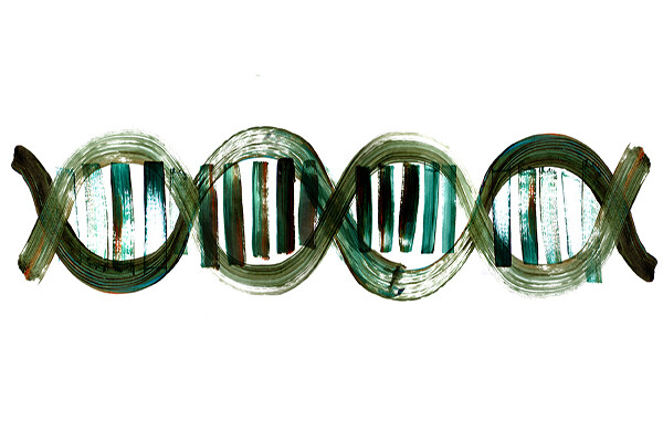 painted rendering of a dna sequence