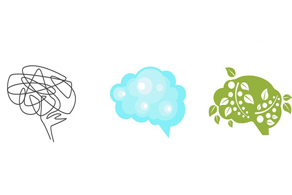 Three renderings of illustrated brains, one is an abstract scribble, one looks cloudy and ephemeral, one looks like plant matter.