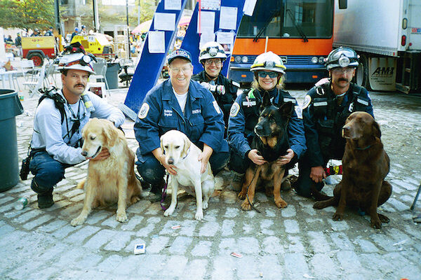 Veterinarians and handlers with their search-and-rescue dogs
