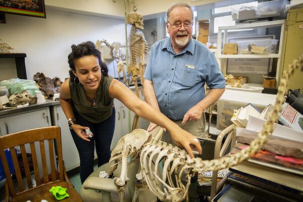 Aja Carter and Peter Dodson standing in a room full of dinosaur skeletons and books, Carter is touching the vertebrae of a skeleton.