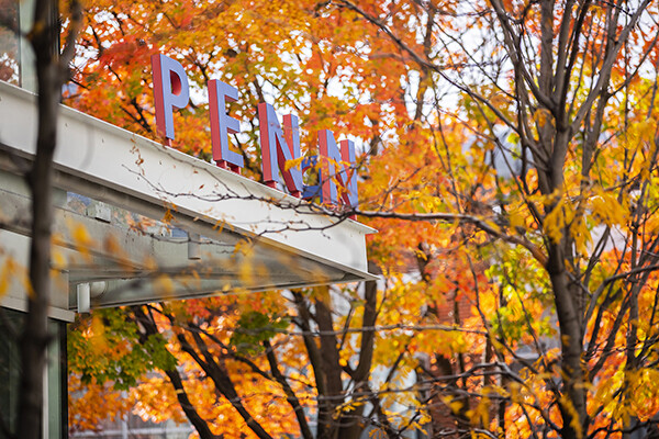 PENN sign on top of building entrance framed by surrounding autumn leaves.