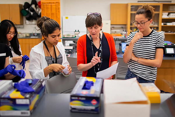 Jennifer Punt stands with three students in a lab setting discussing a paper.