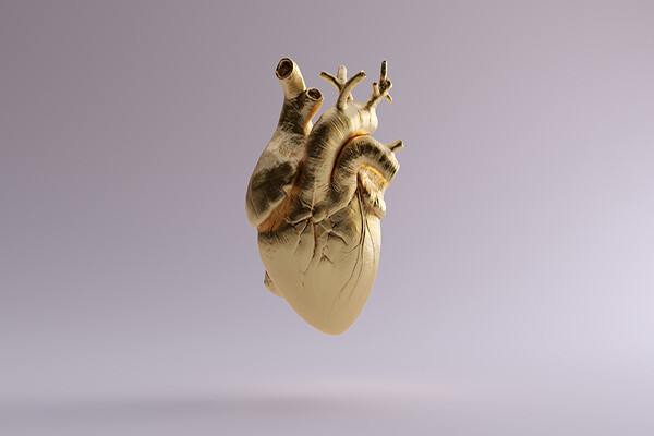 Gold-colored human heart model