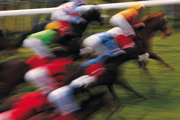 Blurred sport shot of horses racing in a pack close together on grass.