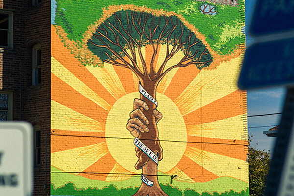 Mural of a tree trunk with a banner wrapped around it that reads PLANT THE SEED UBI against a shining sun.